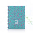 Meu-caderno-especial-(A5)-frida-02