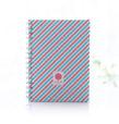 meu-caderno-especial-(a5)-felicidade-azul-e-coral-02